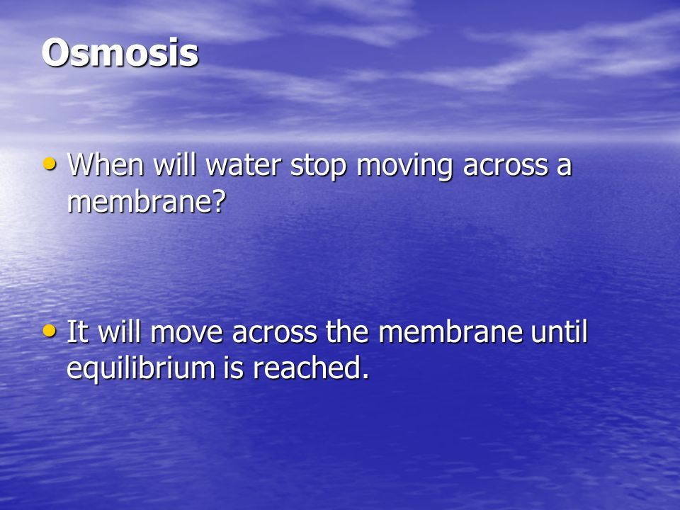 Osmosis When will water stop moving across a membrane