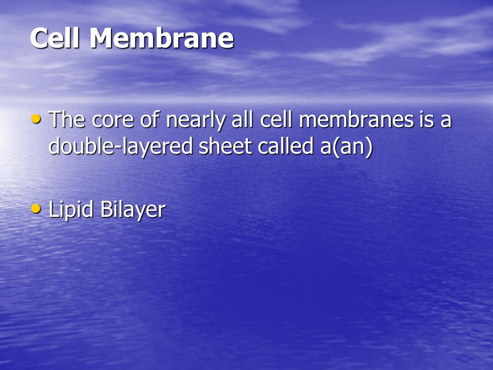 Cell Membrane The core of nearly all cell membranes is a double-layered sheet called a(an) Lipid Bilayer.