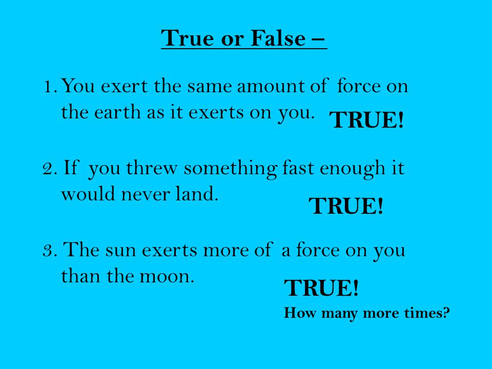 True or False – TRUE! TRUE! TRUE!