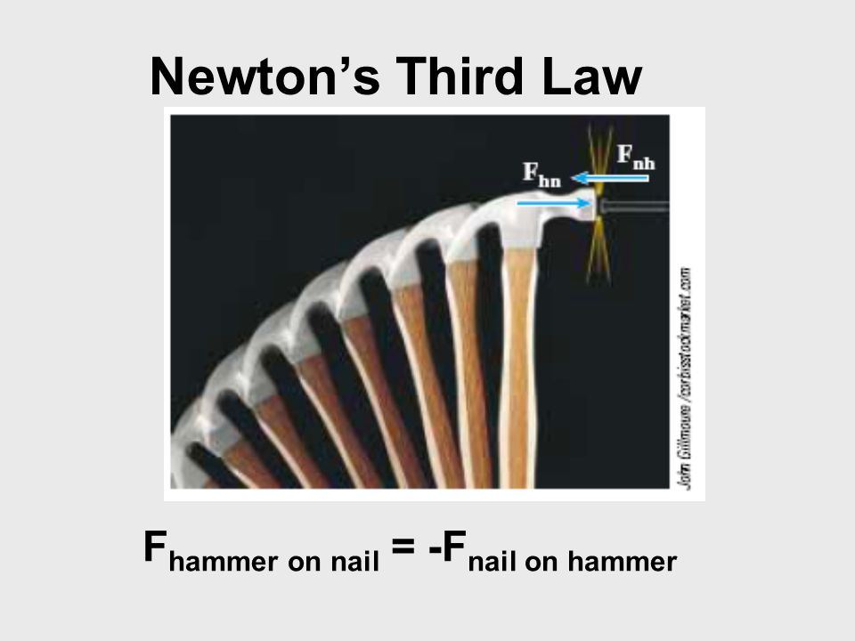 Fhammer on nail = -Fnail on hammer