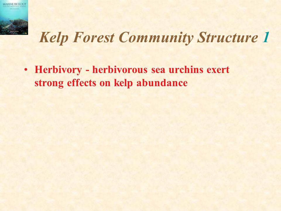 Kelp Forest Community Structure 1