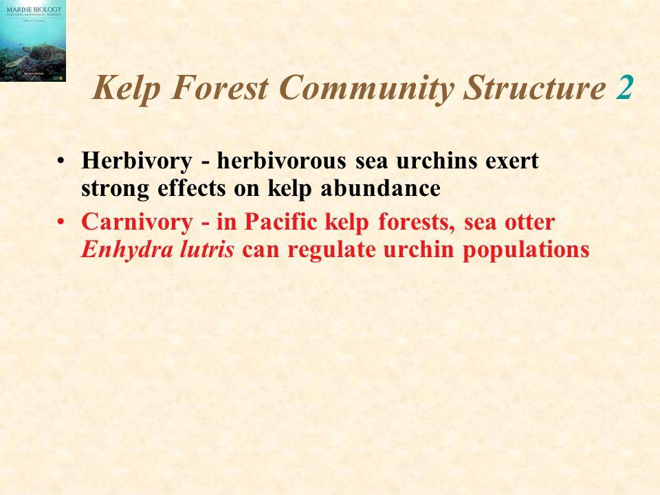 Kelp Forest Community Structure 2