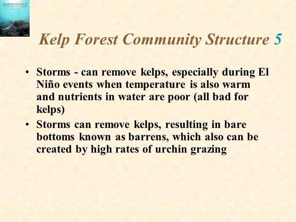 Kelp Forest Community Structure 5