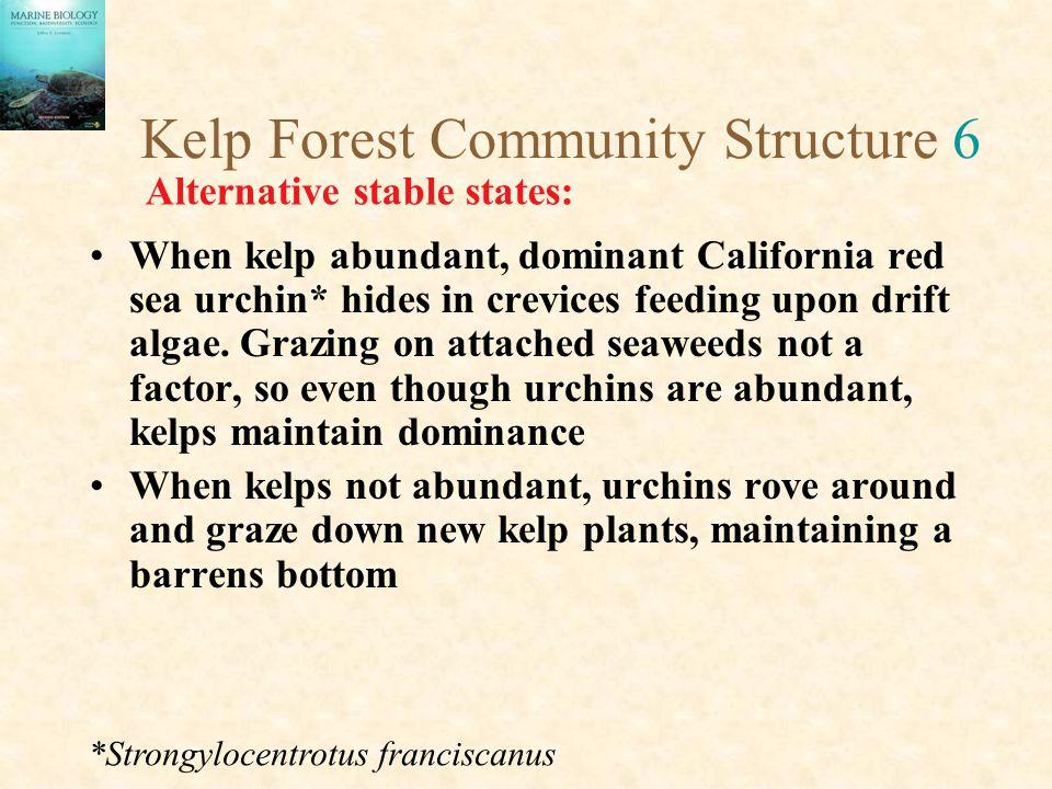 Kelp Forest Community Structure 6