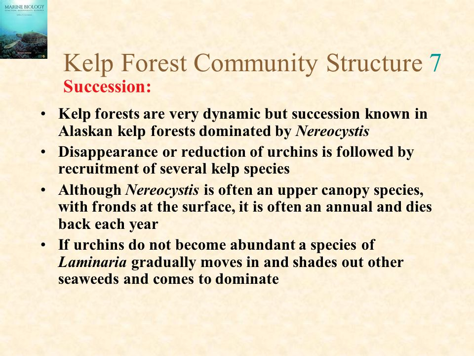 Kelp Forest Community Structure 7
