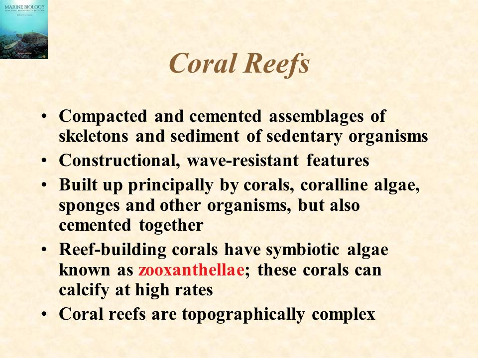 Coral Reefs Compacted and cemented assemblages of skeletons and sediment of sedentary organisms. Constructional, wave-resistant features.