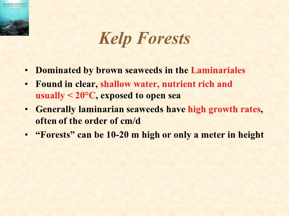 Kelp Forests Dominated by brown seaweeds in the Laminariales