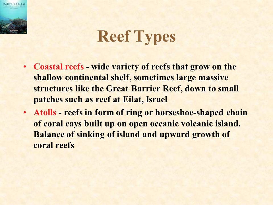 Reef Types