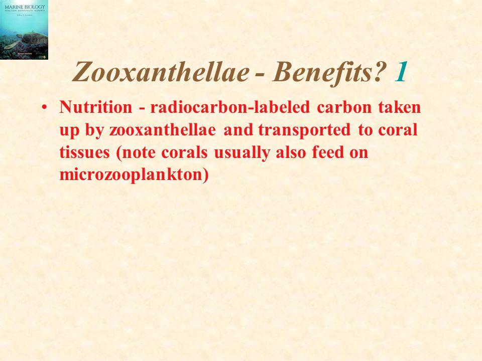 Zooxanthellae - Benefits 1