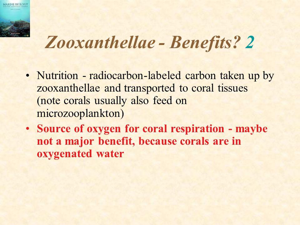 Zooxanthellae - Benefits 2
