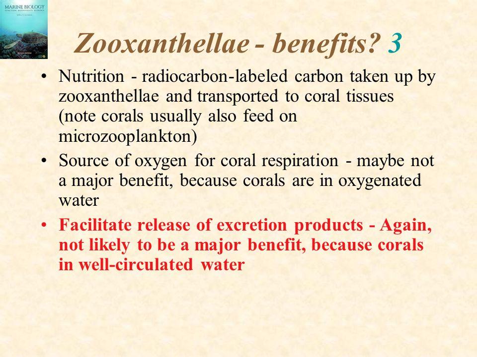 Zooxanthellae - benefits 3