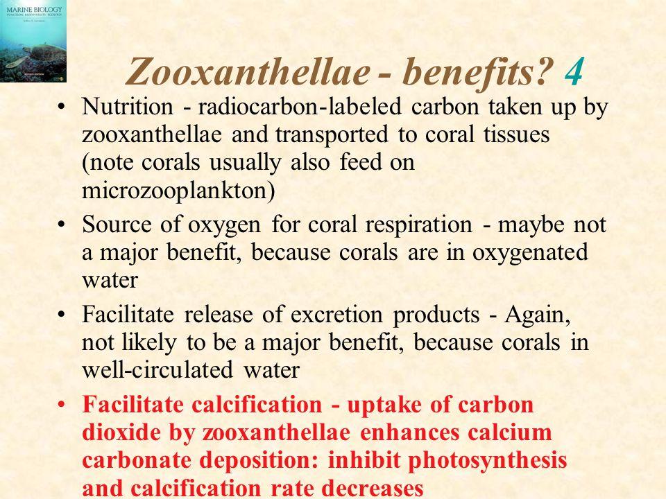Zooxanthellae - benefits 4
