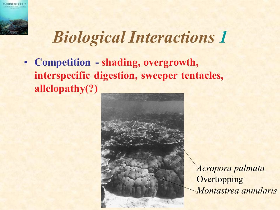 Biological Interactions 1