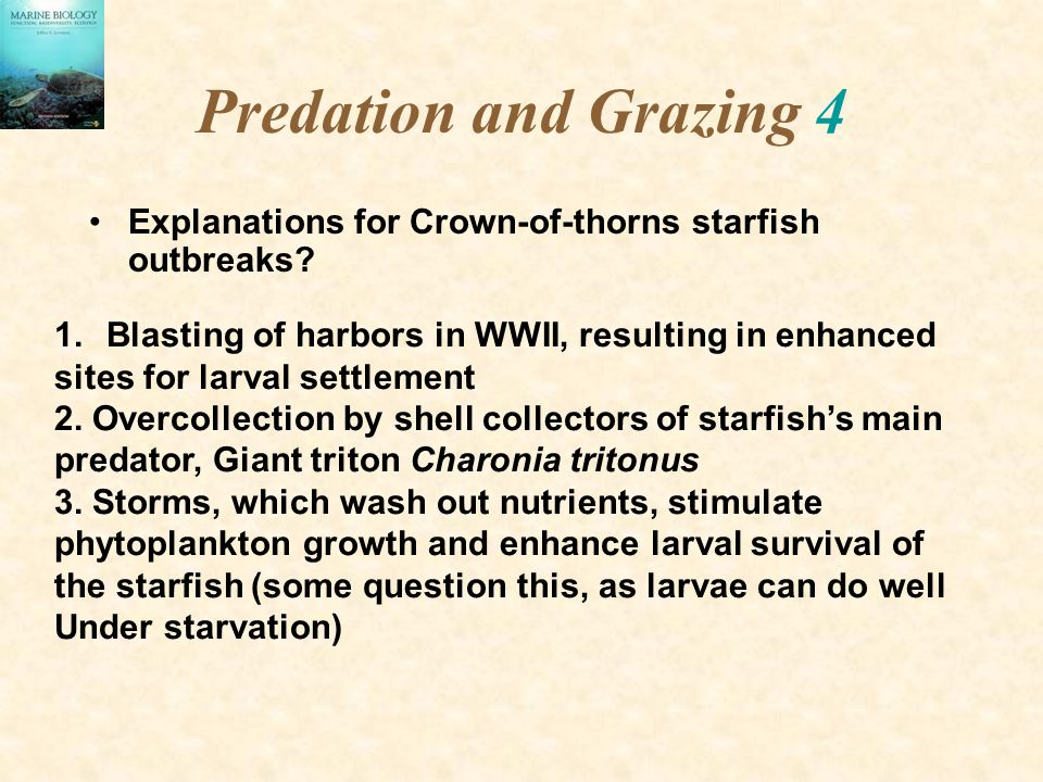 Predation and Grazing 4 Explanations for Crown-of-thorns starfish outbreaks Blasting of harbors in WWII, resulting in enhanced.