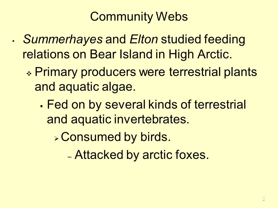Community Webs Summerhayes and Elton studied feeding relations on Bear Island in High Arctic.