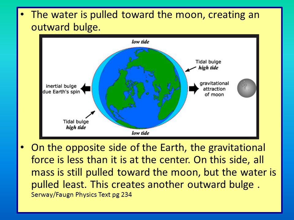 The water is pulled toward the moon, creating an outward bulge.