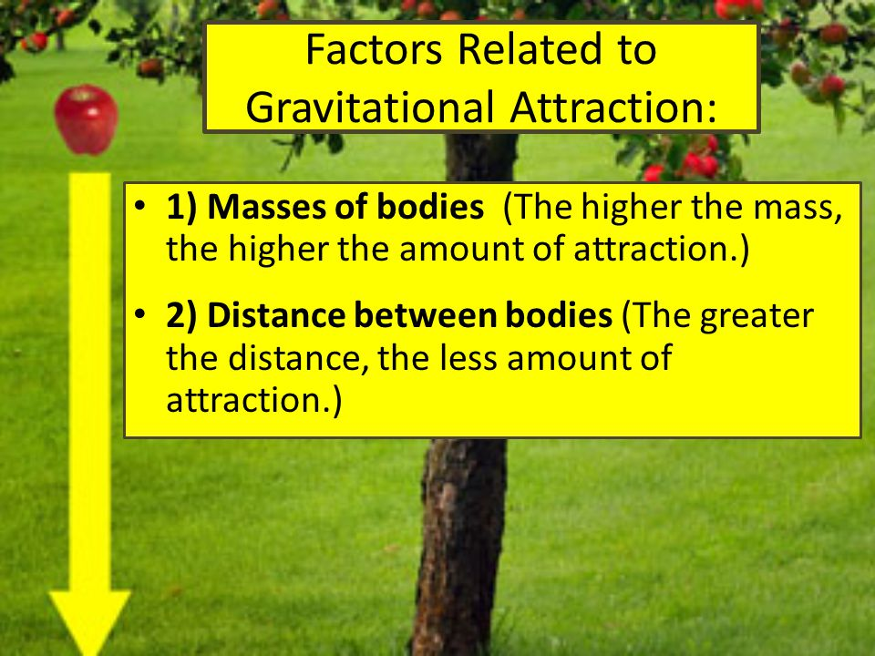 Factors Related to Gravitational Attraction: