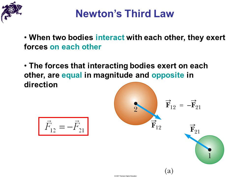 Newton's Third Law When two bodies interact with each other, they exert forces on each other.