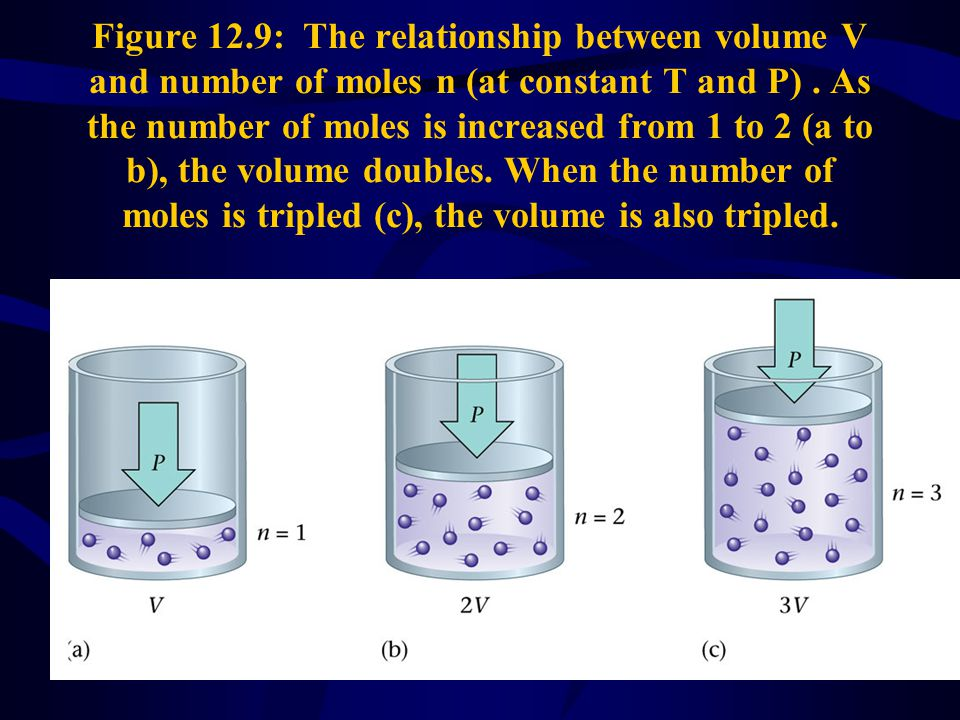 Figure 12.9: The relationship between volume V and number of moles n (at constant T and P) .