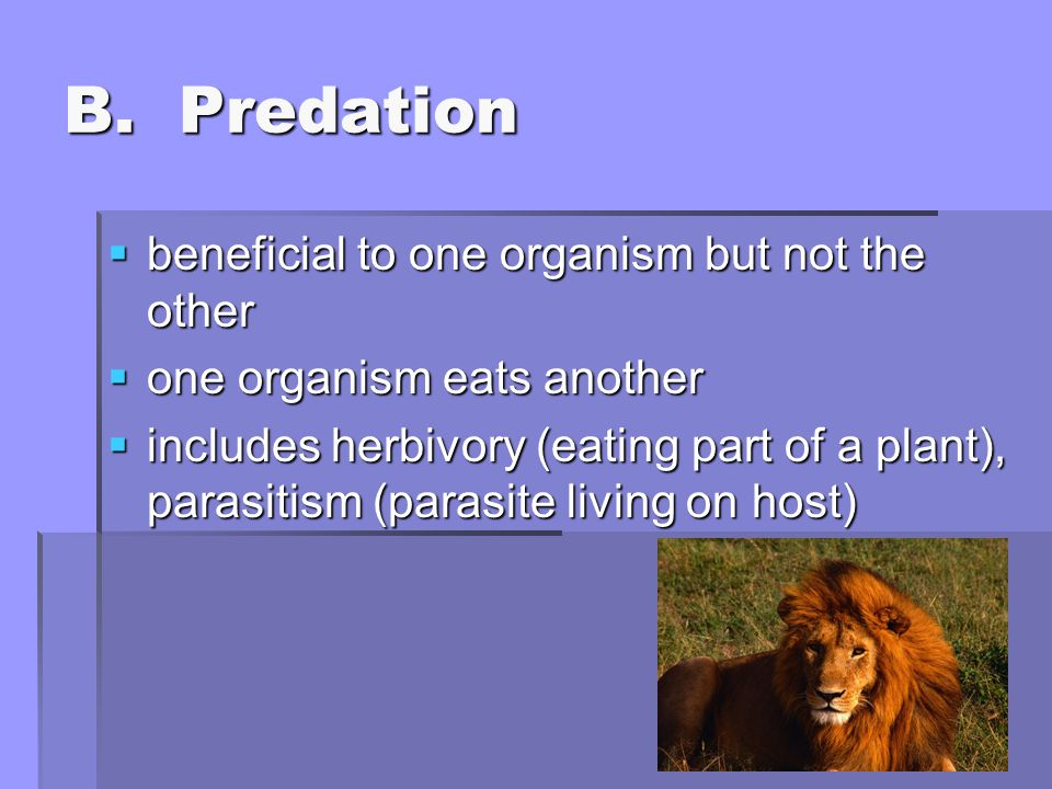 B. Predation beneficial to one organism but not the other