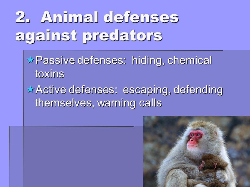 2. Animal defenses against predators