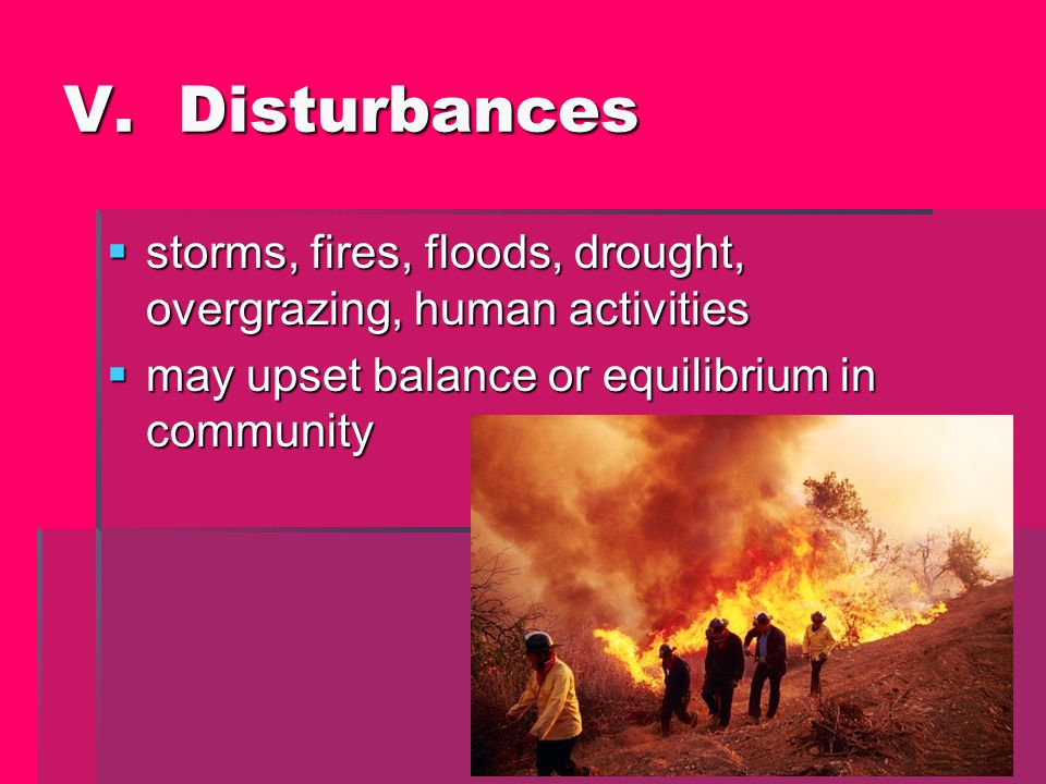 V. Disturbances storms, fires, floods, drought, overgrazing, human activities.