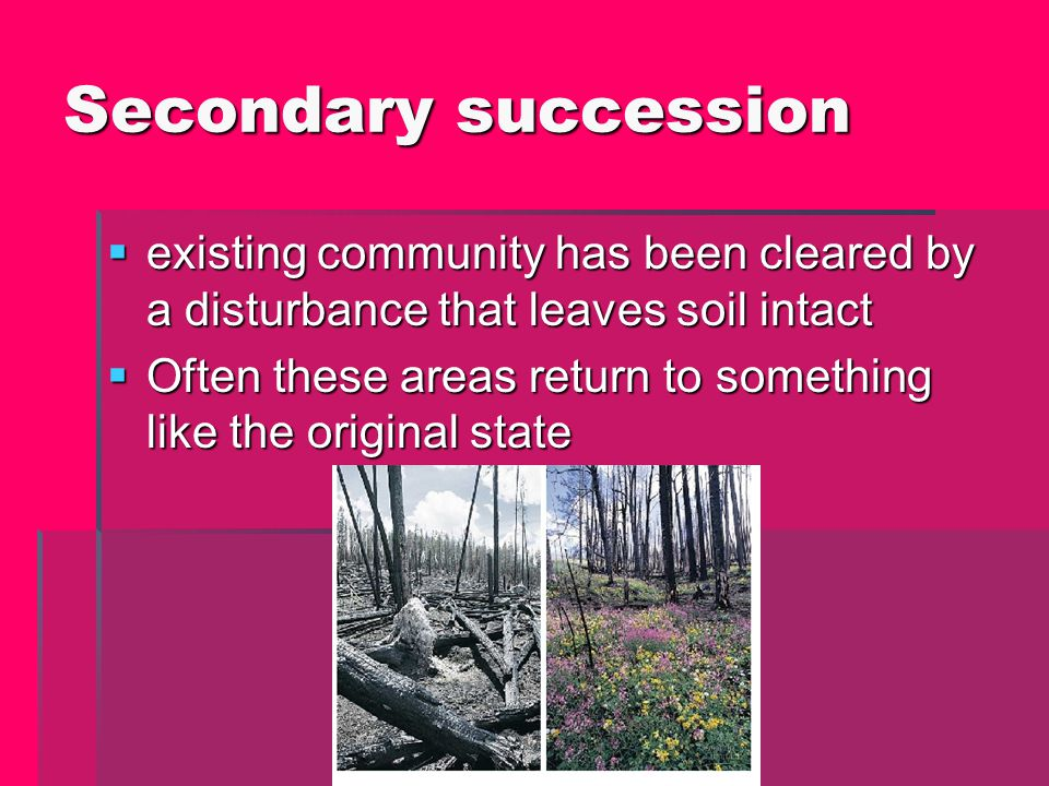 Secondary succession existing community has been cleared by a disturbance that leaves soil intact.