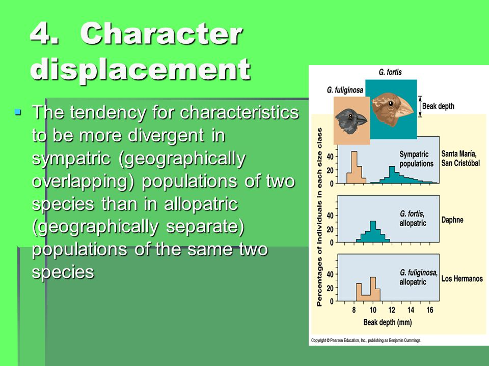 4. Character displacement