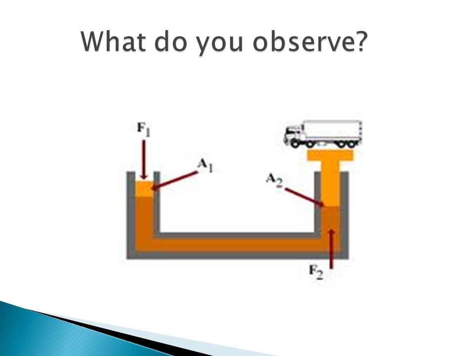 What do you observe