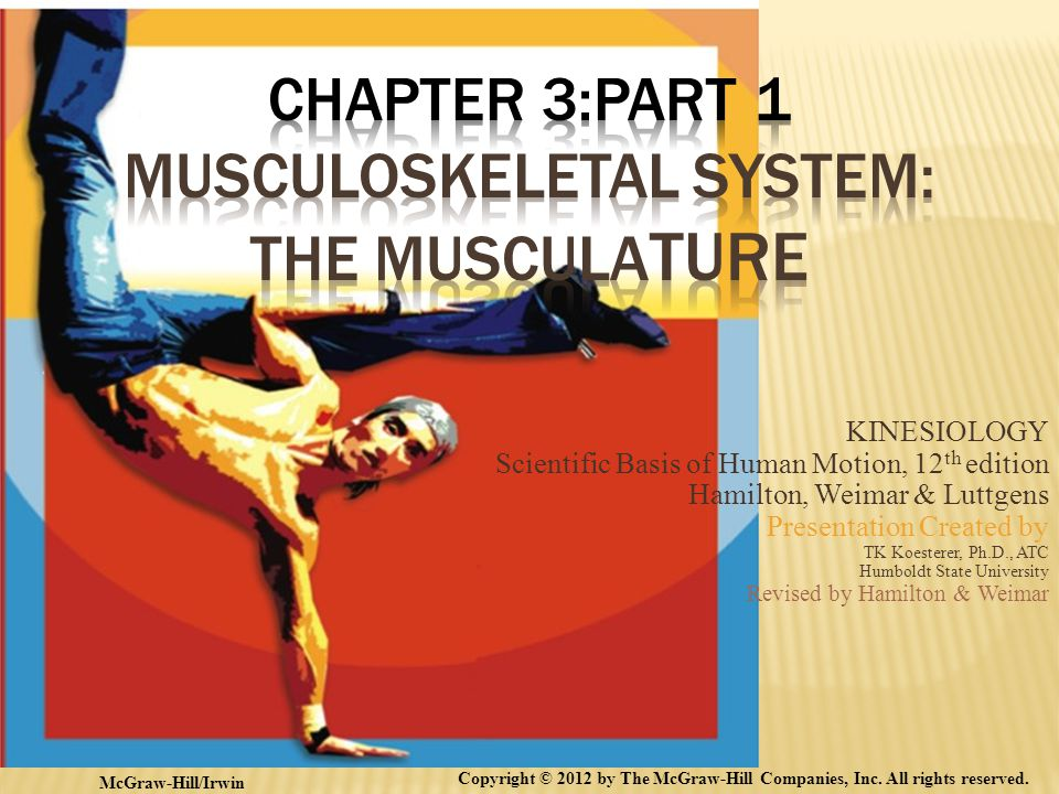 Chapter 3:Part 1 Musculoskeletal System: The Musculature