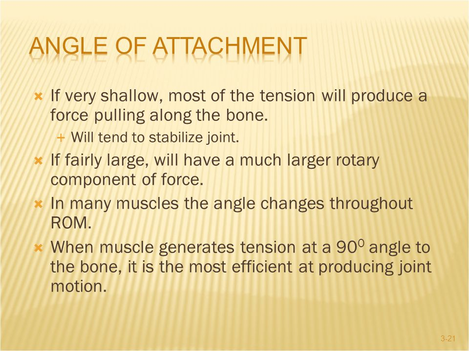 Angle of Attachment If very shallow, most of the tension will produce a force pulling along the bone.