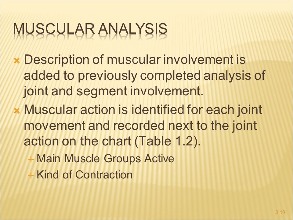MUSCULAR ANALYSIS Description of muscular involvement is added to previously completed analysis of joint and segment involvement.