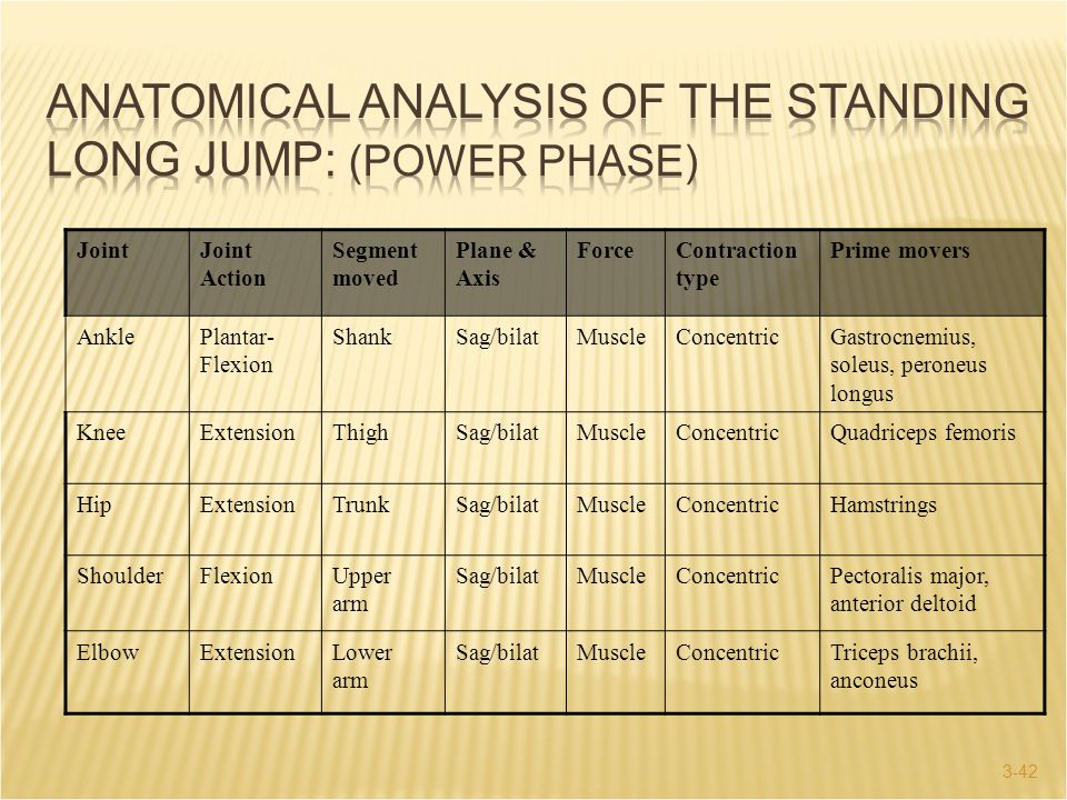 Anatomical Analysis of the Standing Long Jump: (Power Phase)