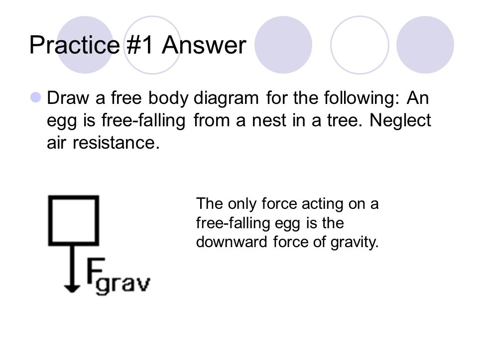 Practice #1 Answer Draw a free body diagram for the following: An egg is free-falling from a nest in a tree. Neglect air resistance.