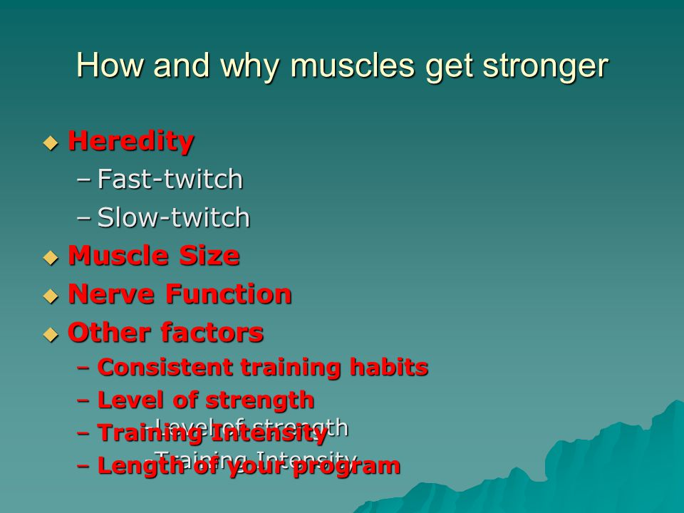 How and why muscles get stronger