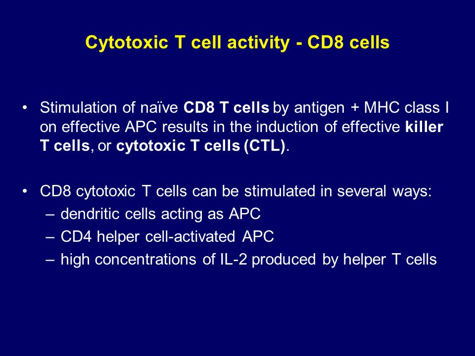 Cytotoxic T cell activity - CD8 cells