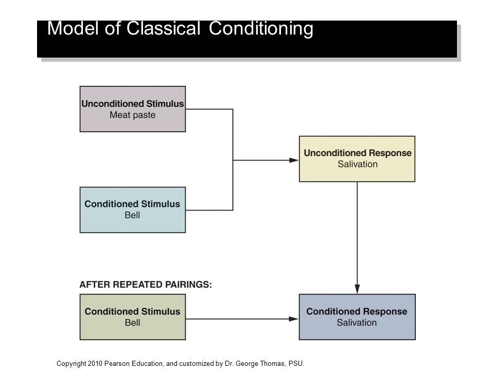 Model of Classical Conditioning