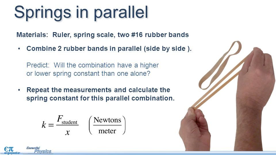 Springs in parallel Materials: Ruler, spring scale, two #16 rubber bands. Combine 2 rubber bands in parallel (side by side ).