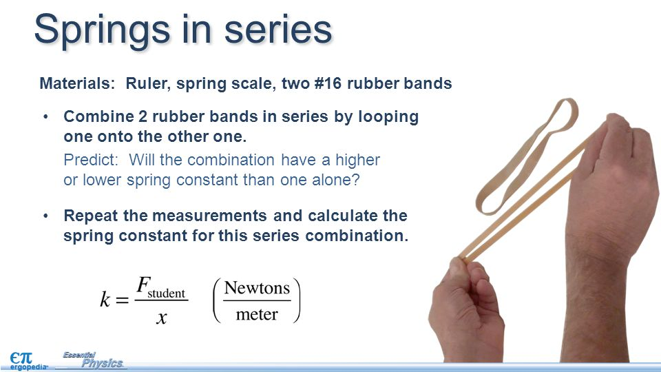 Springs in series Materials: Ruler, spring scale, two #16 rubber bands