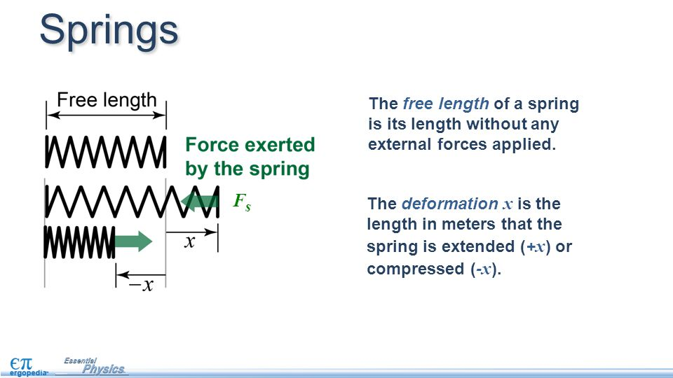 Springs The free length of a spring is its length without any external forces applied. Fs.