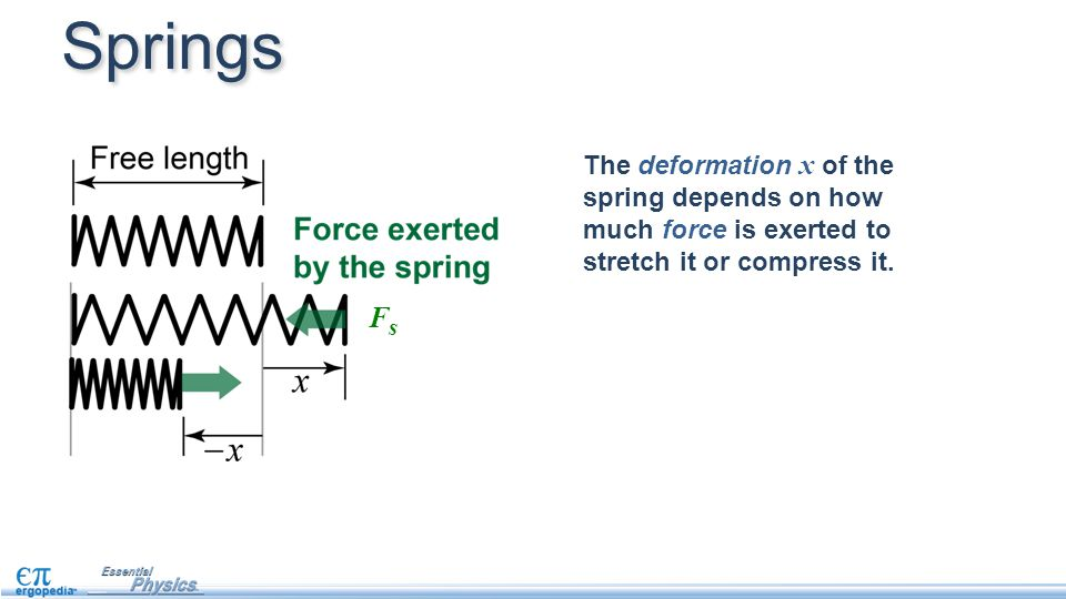 Springs The deformation x of the spring depends on how much force is exerted to stretch it or compress it.