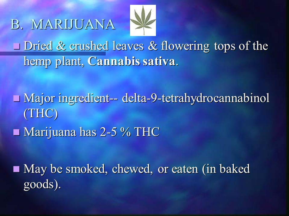 B. MARIJUANA Dried & crushed leaves & flowering tops of the hemp plant, Cannabis sativa. Major ingredient-- delta-9-tetrahydrocannabinol (THC)