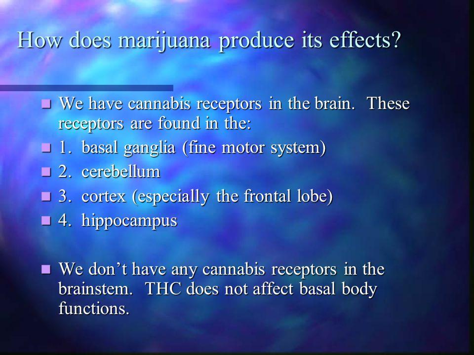 How does marijuana produce its effects