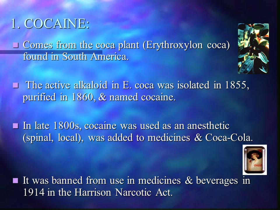 1. COCAINE: Comes from the coca plant (Erythroxylon coca) found in South America.