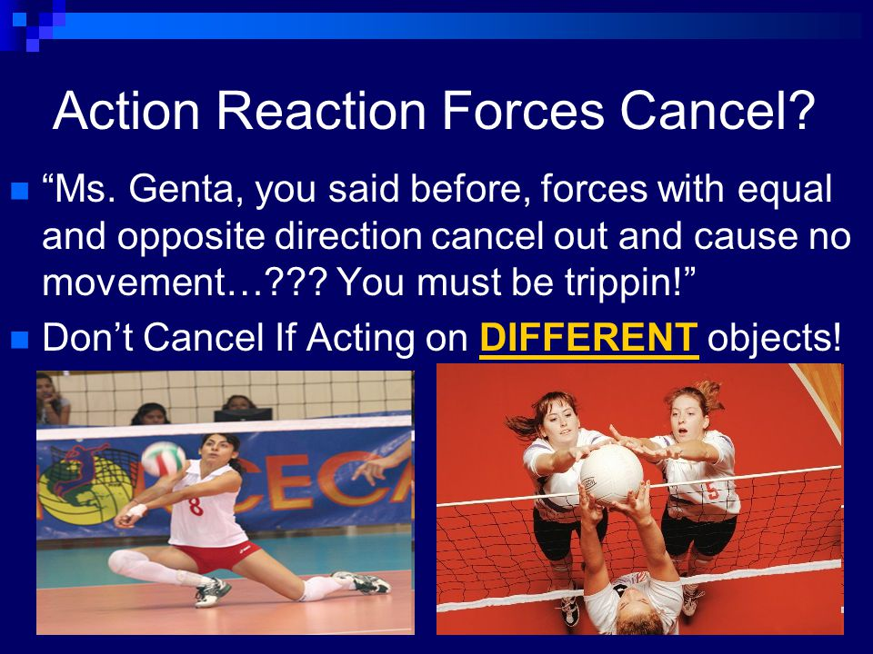 Action Reaction Forces Cancel