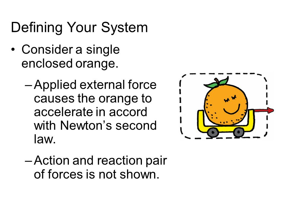 Defining Your System Consider a single enclosed orange.