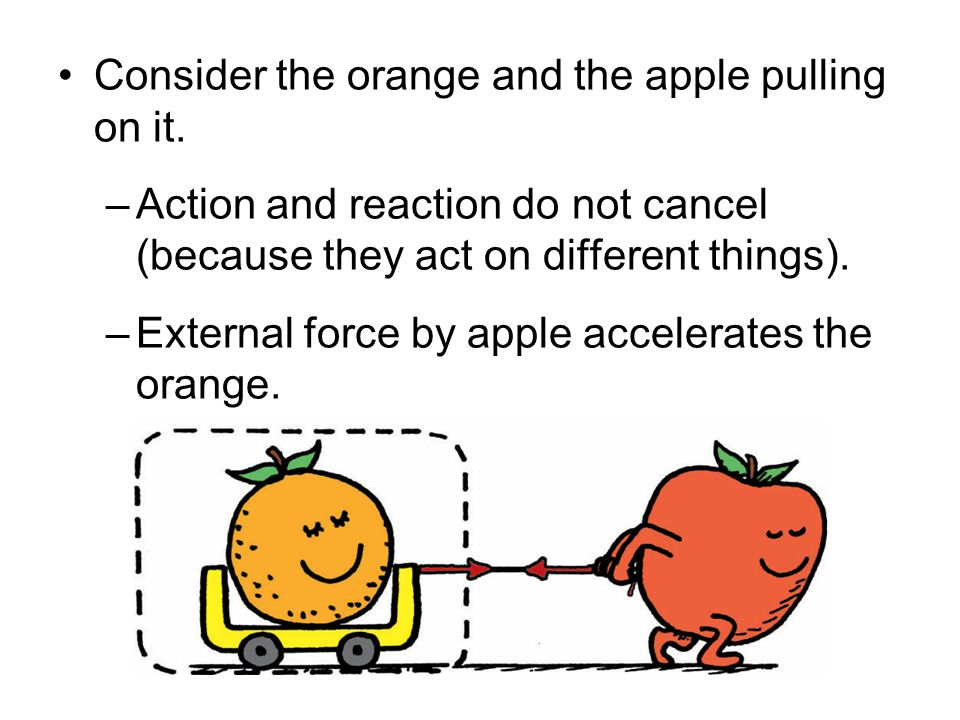 Consider the orange and the apple pulling on it.