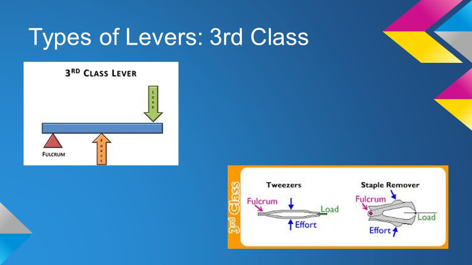 Types of Levers: 3rd Class