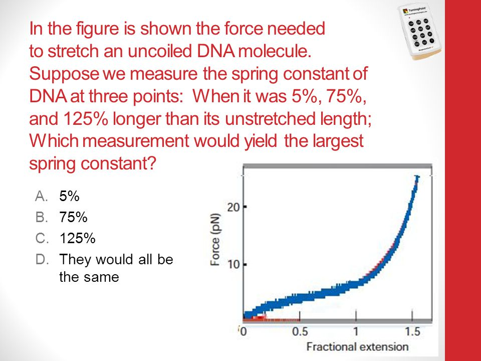 In the figure is shown the force needed to stretch an uncoiled DNA molecule. Suppose we measure the spring constant of DNA at three points: When it was 5%, 75%, and 125% longer than its unstretched length; Which measurement would yield the largest spring constant