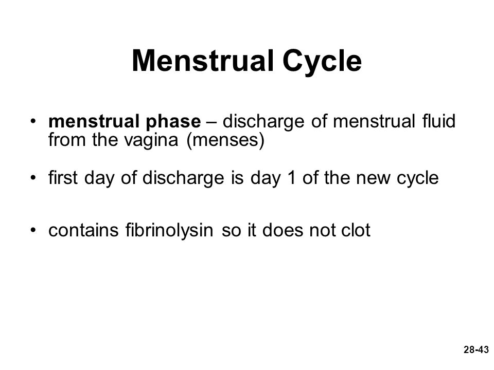 Menstrual Cycle menstrual phase – discharge of menstrual fluid from the vagina (menses) first day of discharge is day 1 of the new cycle.